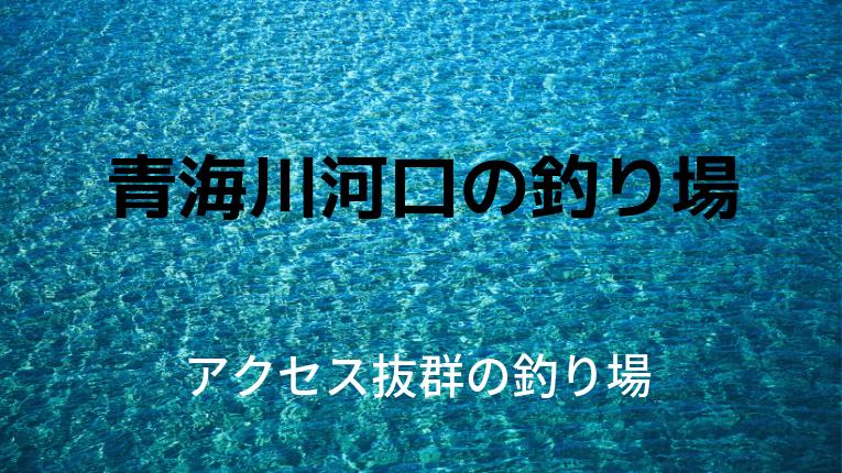 新潟県糸魚川市 青海川河口