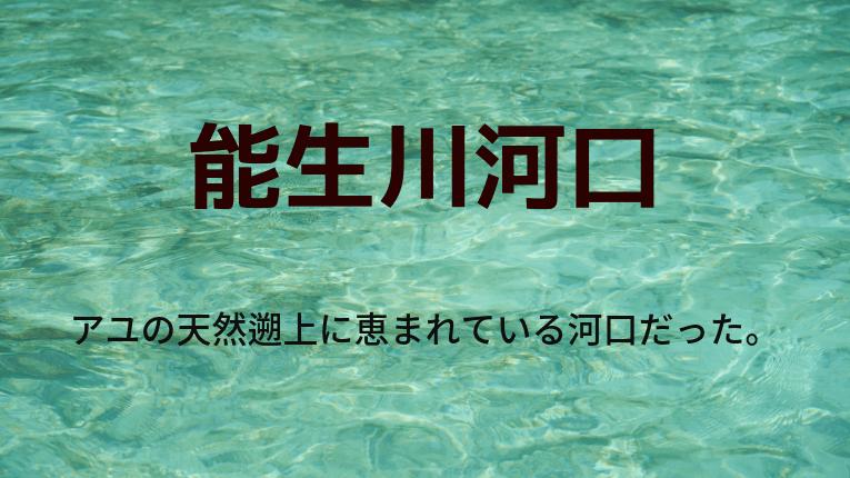 新潟県糸魚川市 能生川河口
