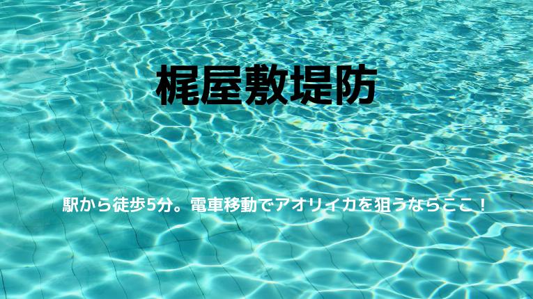 新潟県糸魚川市梶屋敷堤防