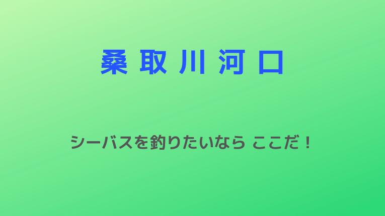 桑取川河口(有間川河口):シーバスを釣りたいなら ここだ!