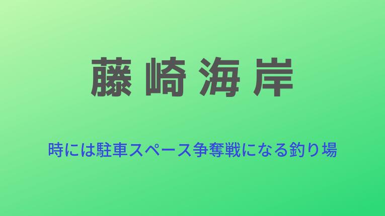 新潟県糸魚川市 藤崎海岸