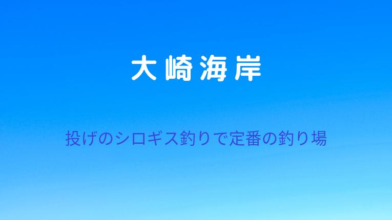 大崎海岸:投げのシロギス釣りで定番の釣り場