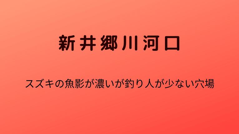 新井郷川河口:スズキの魚影が濃いが釣り人が少ない穴場