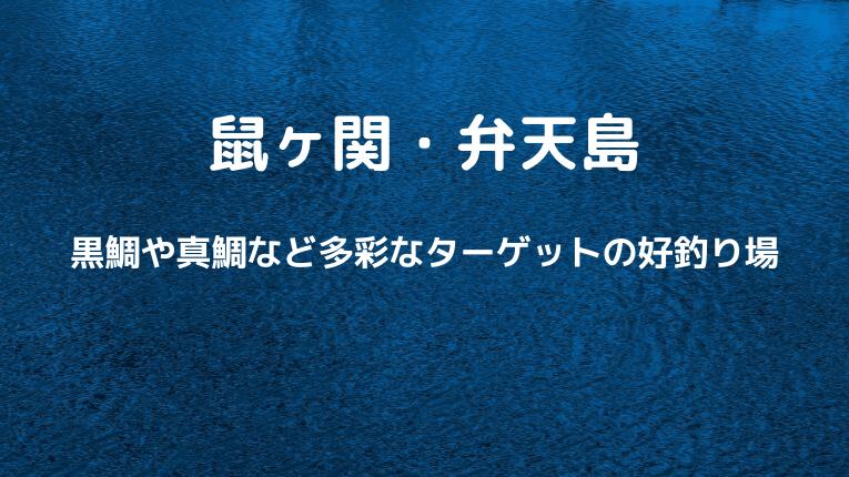 鼠ヶ関・弁天島:黒鯛や真鯛など多彩なターゲットの好釣り場