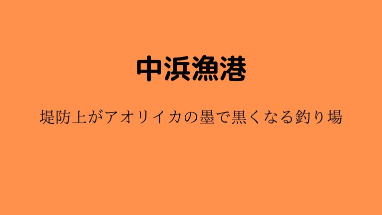 中浜漁港:新潟県最北端の堤防はアオリイカの墨で黒くなる